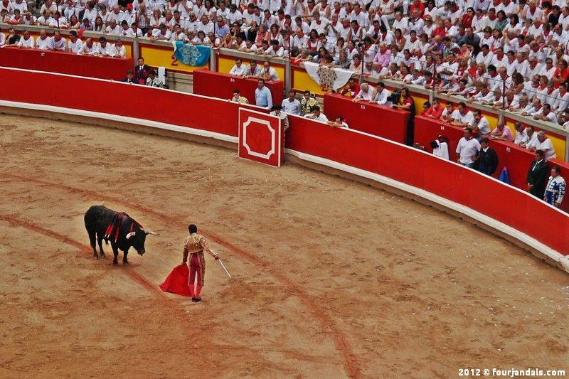 bullfighting - Google Search