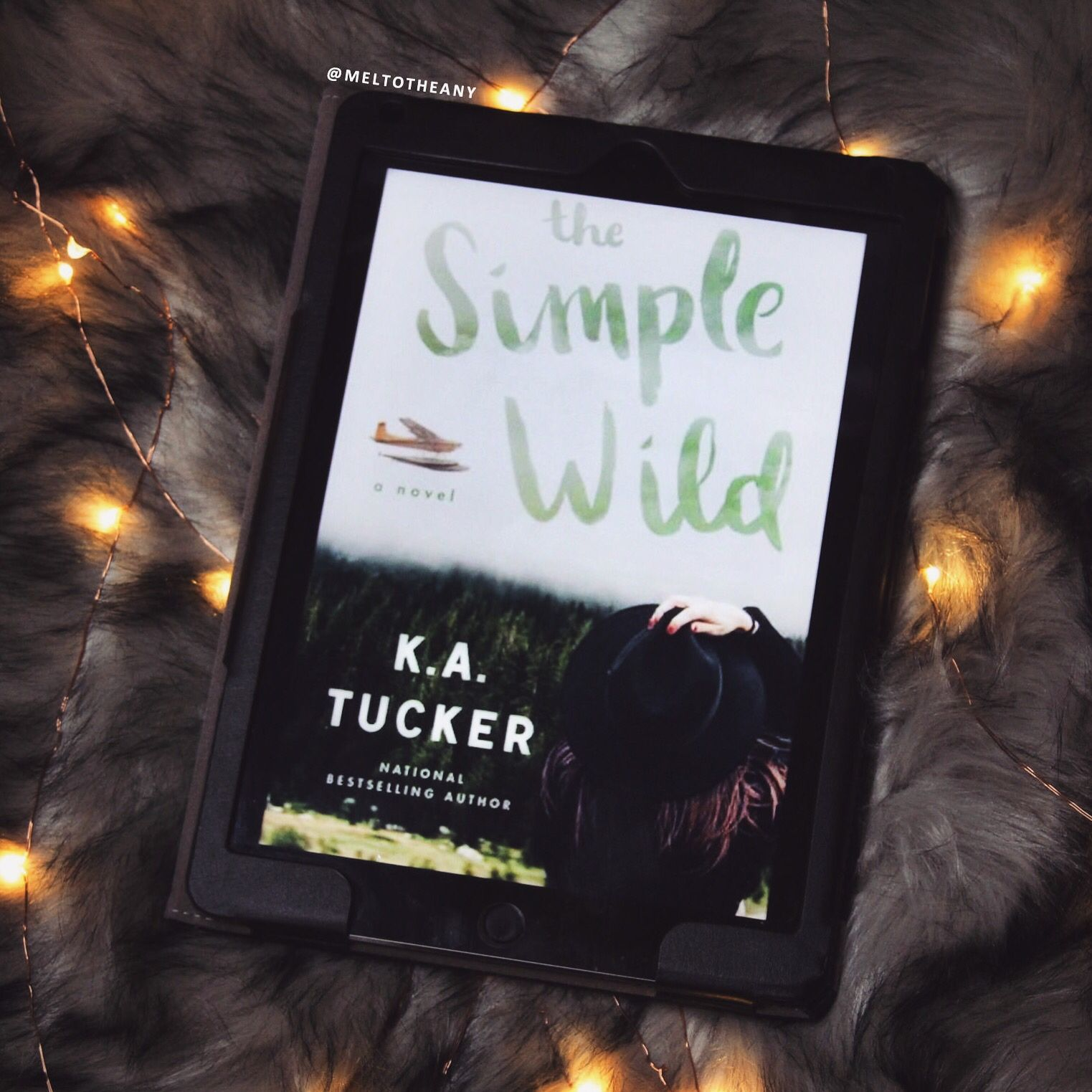 The Simple Wild by K.A. Tucker (meltotheany) Simple