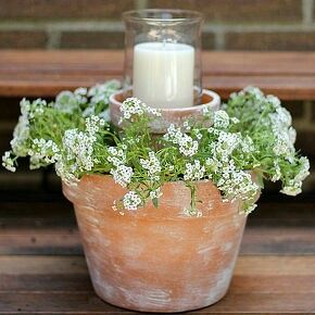 Flower pot candle