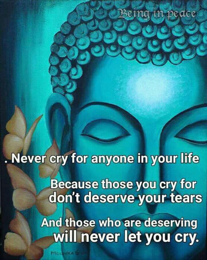 Pin By Vanessa Ledin On Random Facts And Quotes Pinterest Buddha