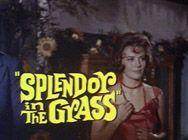 Splendor in the Grass  Favorite movie in my youth