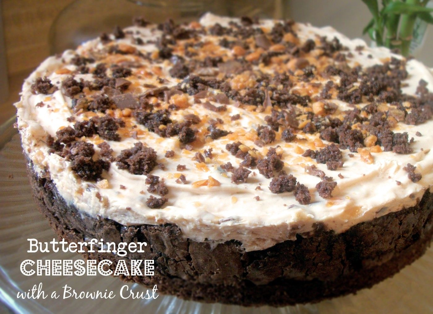 Brownie Crusted Butterfinger Cheesecake
