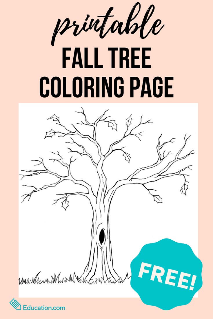 Bare Tree Coloring Page | Printables | Pinterest | Fall trees ...