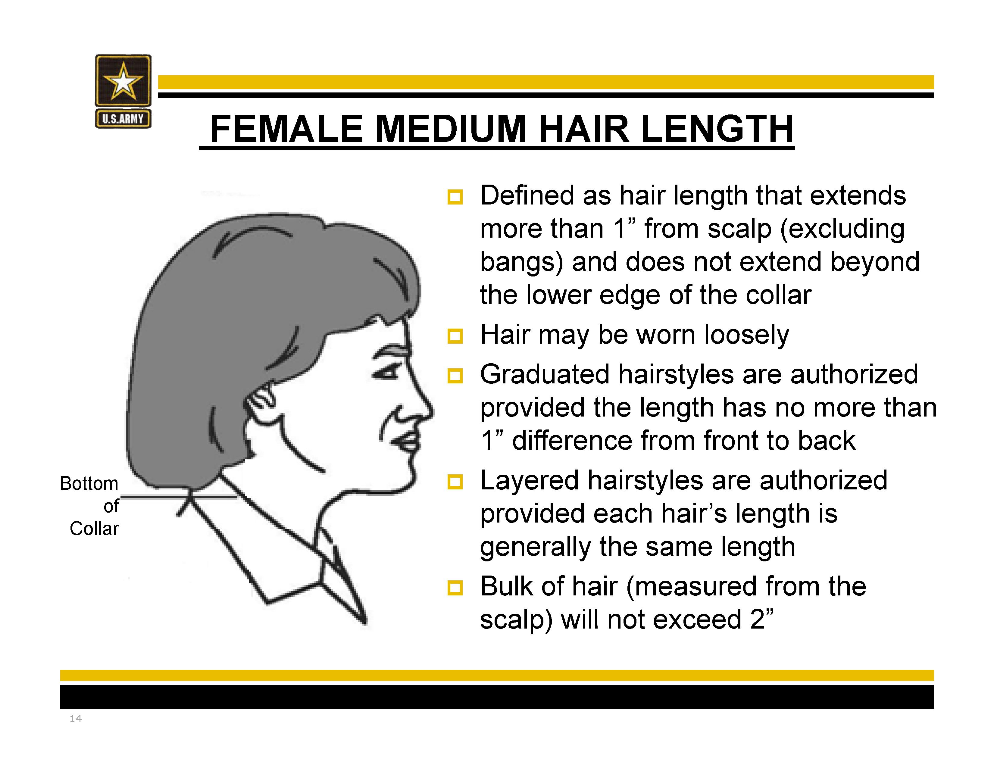 New Army Hair Regulations Ar 670 1 As Of 31 March 2017 Mediumlength