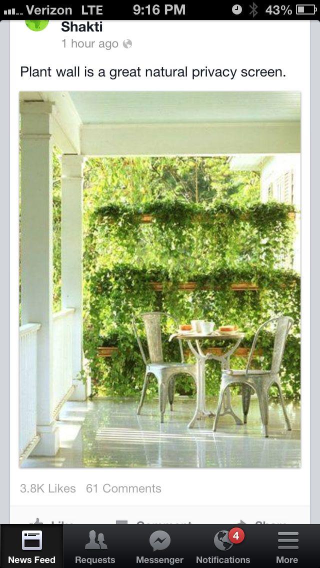 Vertical garden screen treehouse pinterest garden for Vertical garden privacy screen