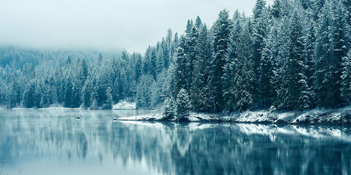 Nature Winter Snow Iphone Wallpaper Winter Winter Wallpaper Winter Wallpaper Hd
