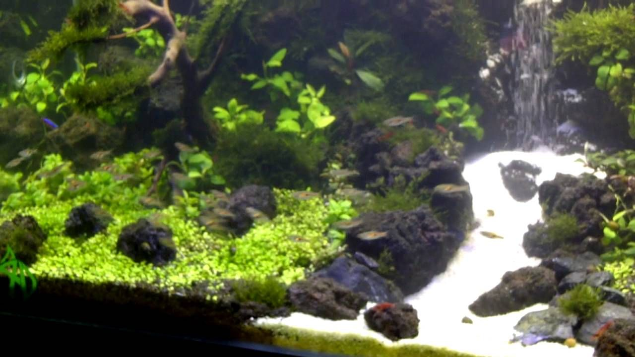 Under Water Waterfall Aquascape Fresh Water Fish Tank Aquarium Sand Aquascape