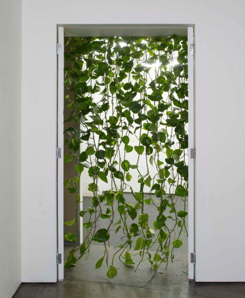 New Beaded Curtains Vines Plants Hanging Plants Indoor Plants