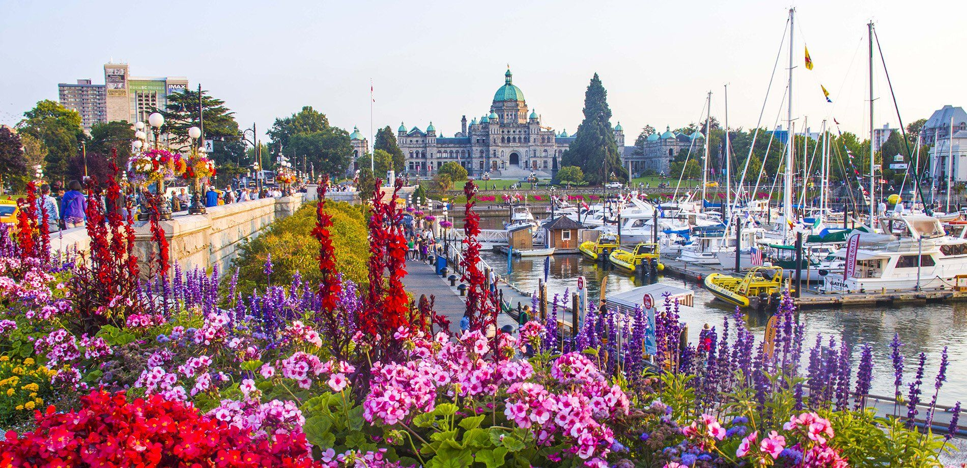 Front Page in 2020 Vancouver travel, Victoria island