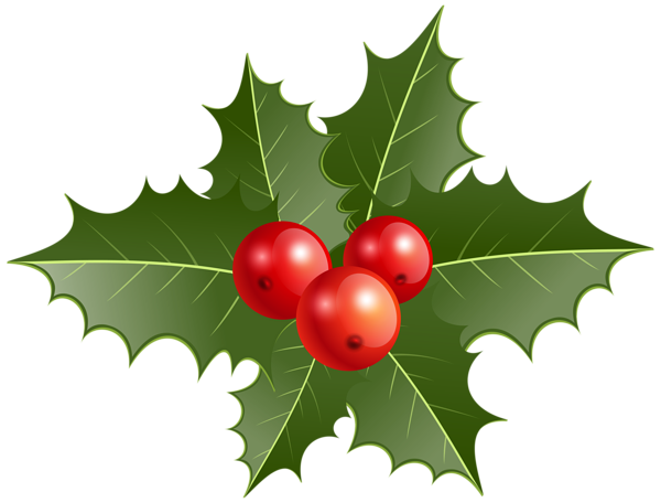 Christmas Holly Png Clip Art Christmas Holly Christmas Tree Decorations Christmas Decorations