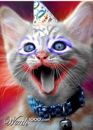 Clown – Funny cats - Cat names