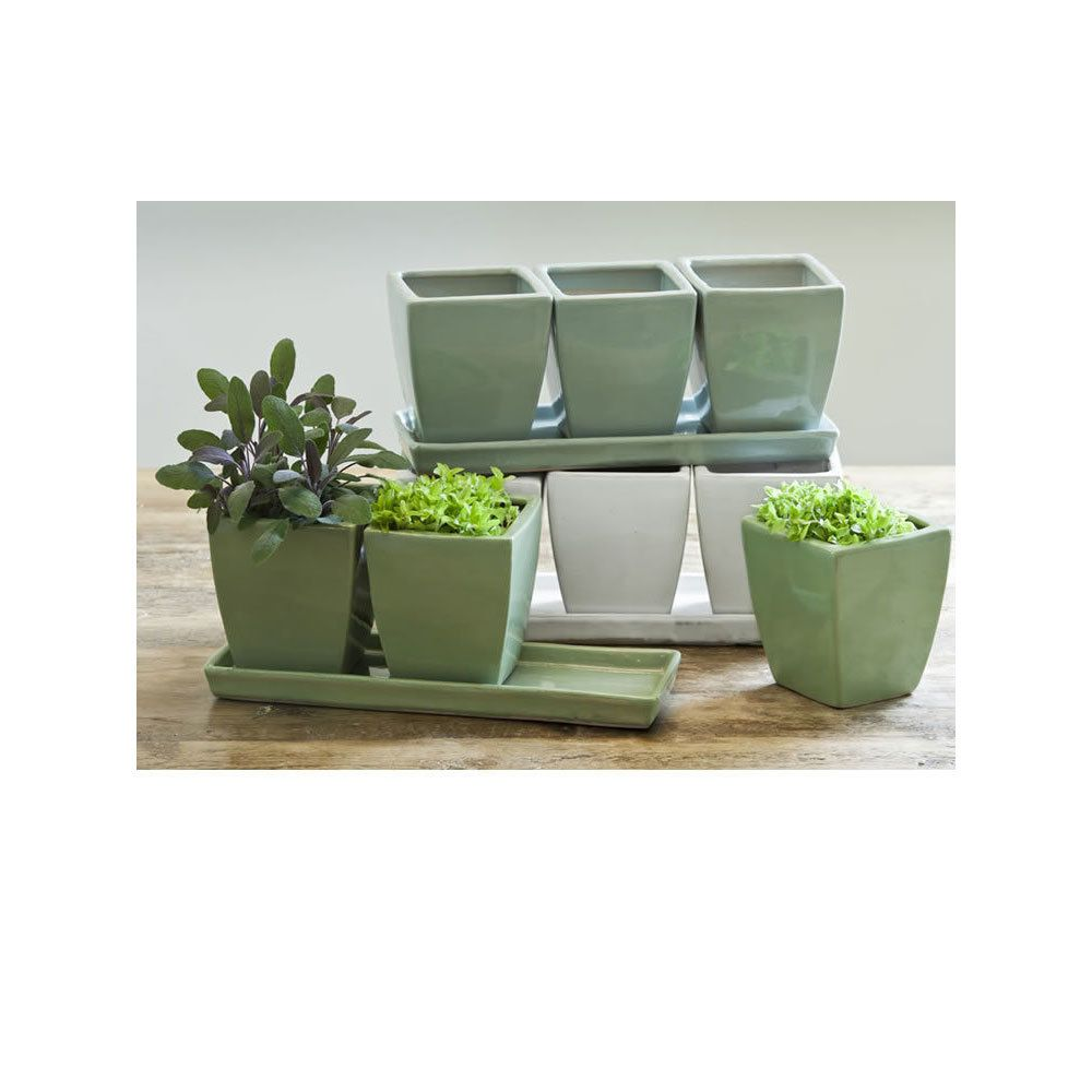 Herb Pot Planter (Set of 3 Moss, Sage, White) | Planters, Herbs and ...