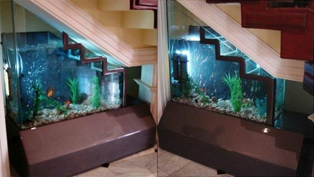 Under Stair Aquarium Idea Aquarium Ideas Lit Sous Escalier Sous