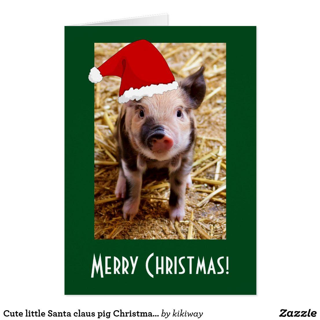 Cute little Santa claus pig Christmas fun photo Holiday Card ...