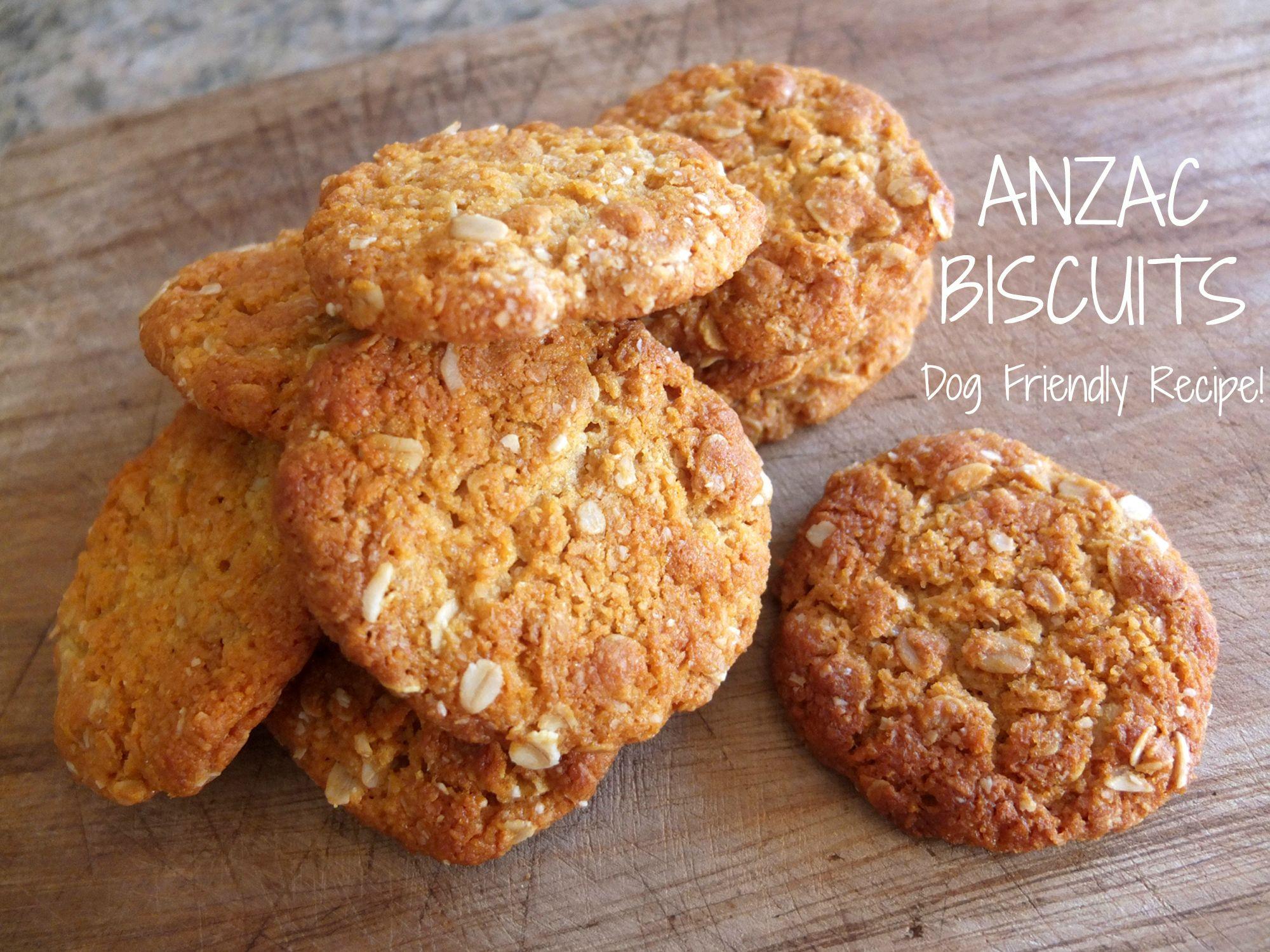 Club Anzac Cookies Recipe Biscuit Recipe Dog Food Recipes