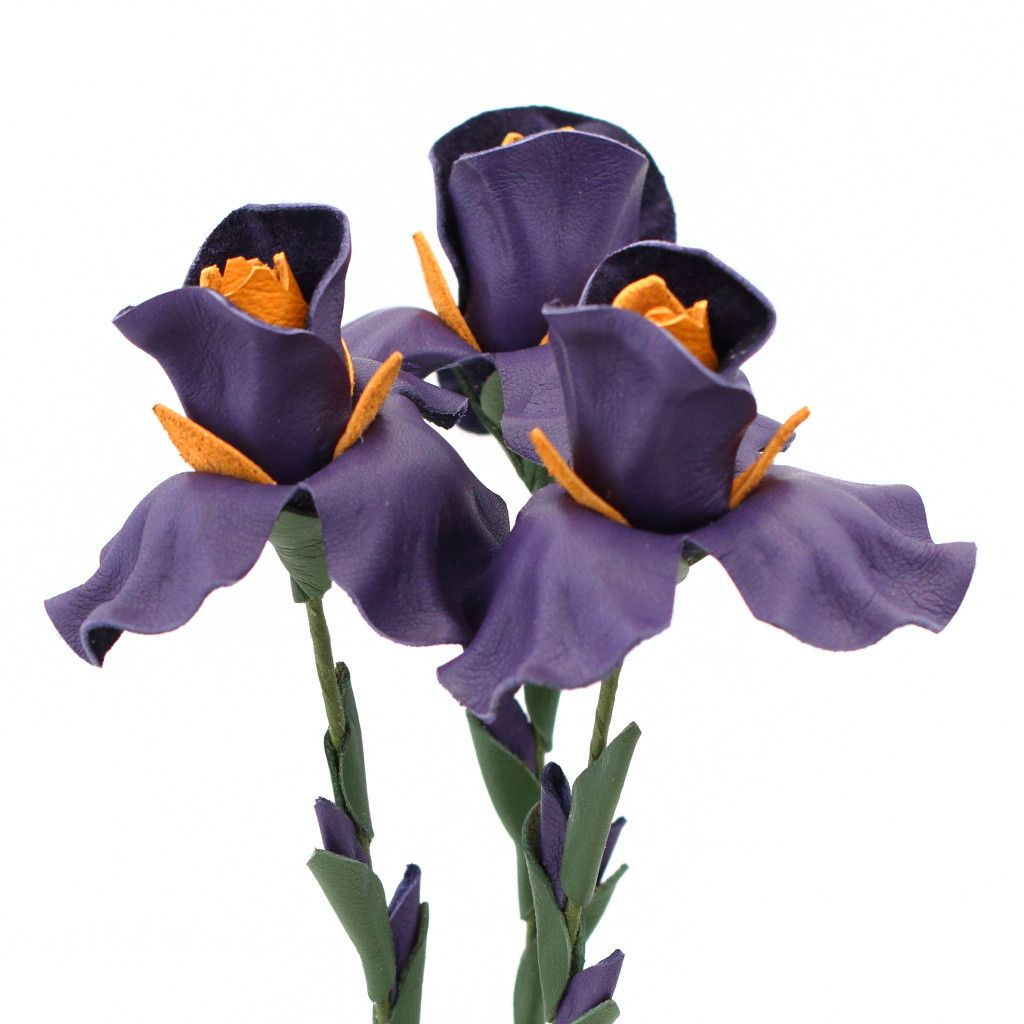 Leather iris flower bouquet dark purple pinterest dark purple leather iris flower bouquet dark purple izmirmasajfo