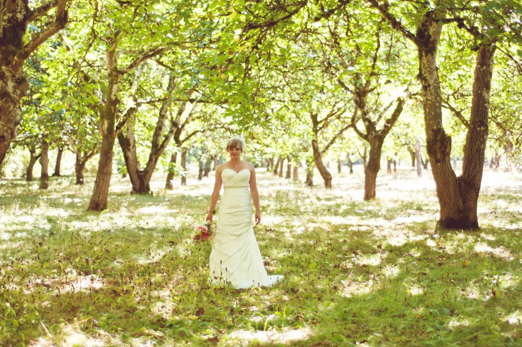 Willamette Mission State Park Wedding Venue Only 20 Min From Downtown Salem Oregon Orchards And