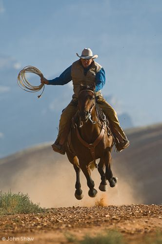 John Shaw's  Wyoming Cowboy