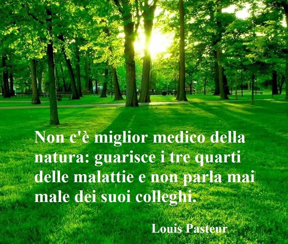Frasi Sulla Natura Citazioni Sulla Natura Frasi Sulla Salute