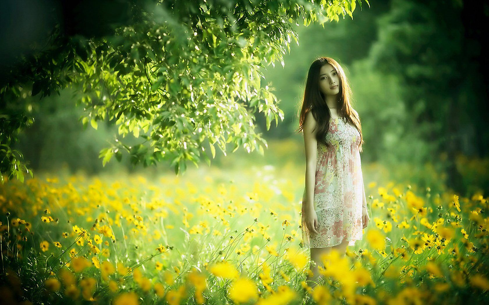 Paul Hayward Bangkok Girl Wallpaper Photography Wallpaper Beautiful Nature