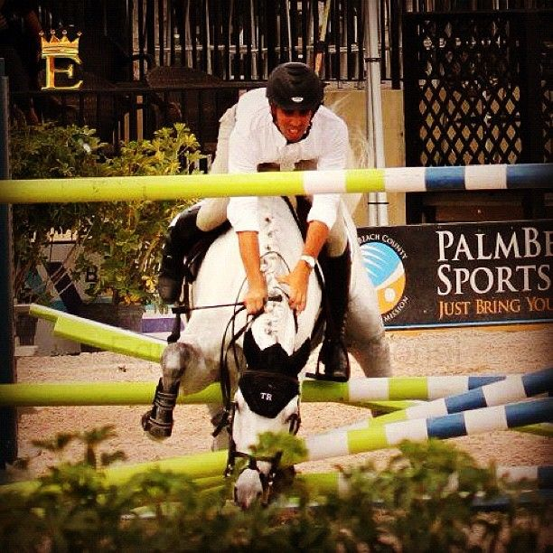 #horse #hunter #hipódromo #horselovers #horsejump #horsemanship #olimpicgames #poni #poniclub #cavalo #caballo #dressage #frison #instahorse #ecuestre #equestrian #equitacion #equitacion #equitation - @antonio816- #webstagram