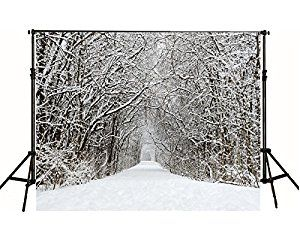 7x5ft White Accumulated Snow-covered Road Photography Backdrop Winter Christmas no Crease Photo Background FT0307