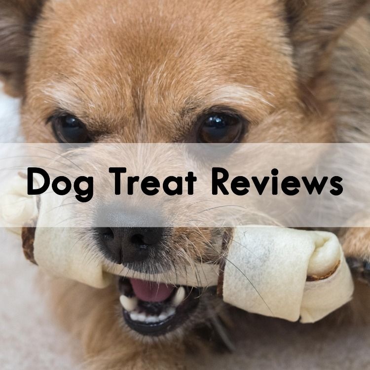Dog Treat Reviews Dog Treats Dogs Natural Pet
