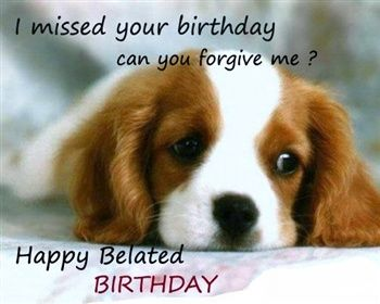 Belated Birthday Wishes Funny Google Search Pets