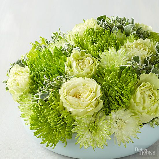 Chrysanthemums, Carnation And