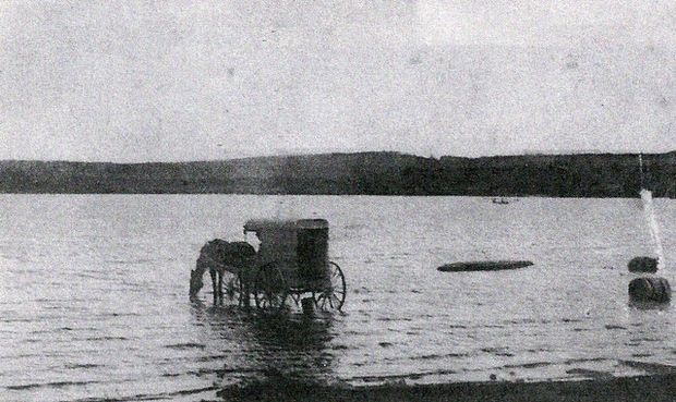 Not only can you lead a horse to water, you can darn well drive him there in a wagon, and he'll drink, as proven by this undated photo from Budd Lake, NJ. Courtesy of the Mt. Olive Historical Society