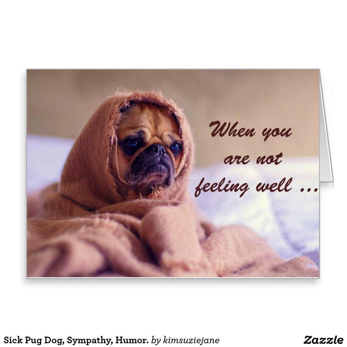 Sick Pug Dog Sympathy Humor Card Zazzle Com Au Pugs Dog