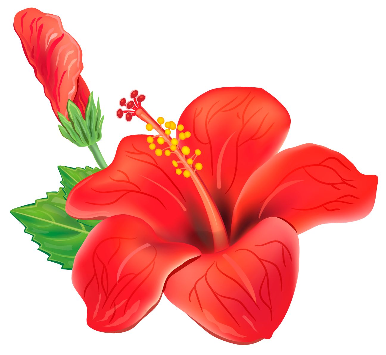 Red Exotic Flower Png Clipart Picture Carnaval