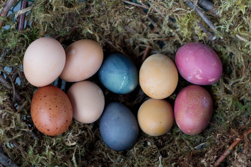 Easter Eggs: Natural Dyes