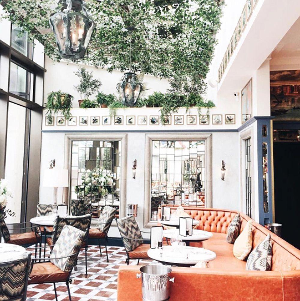 The Ivy Restaurant Design Cafe Furniture Cafe Design Restaurant Design