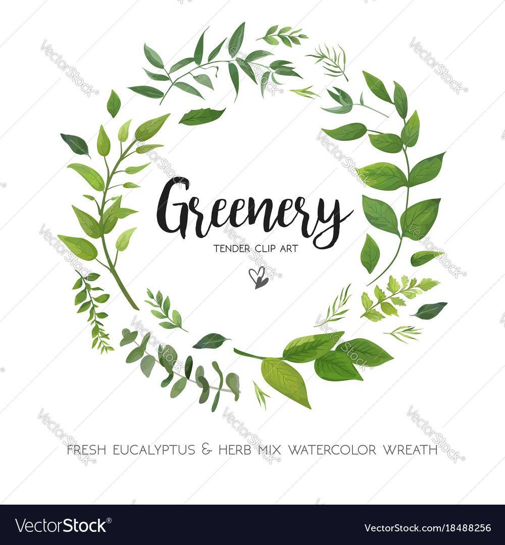 e1cf1c6fcfd9 Floral card design with green eucalyptus fern vector image on ...