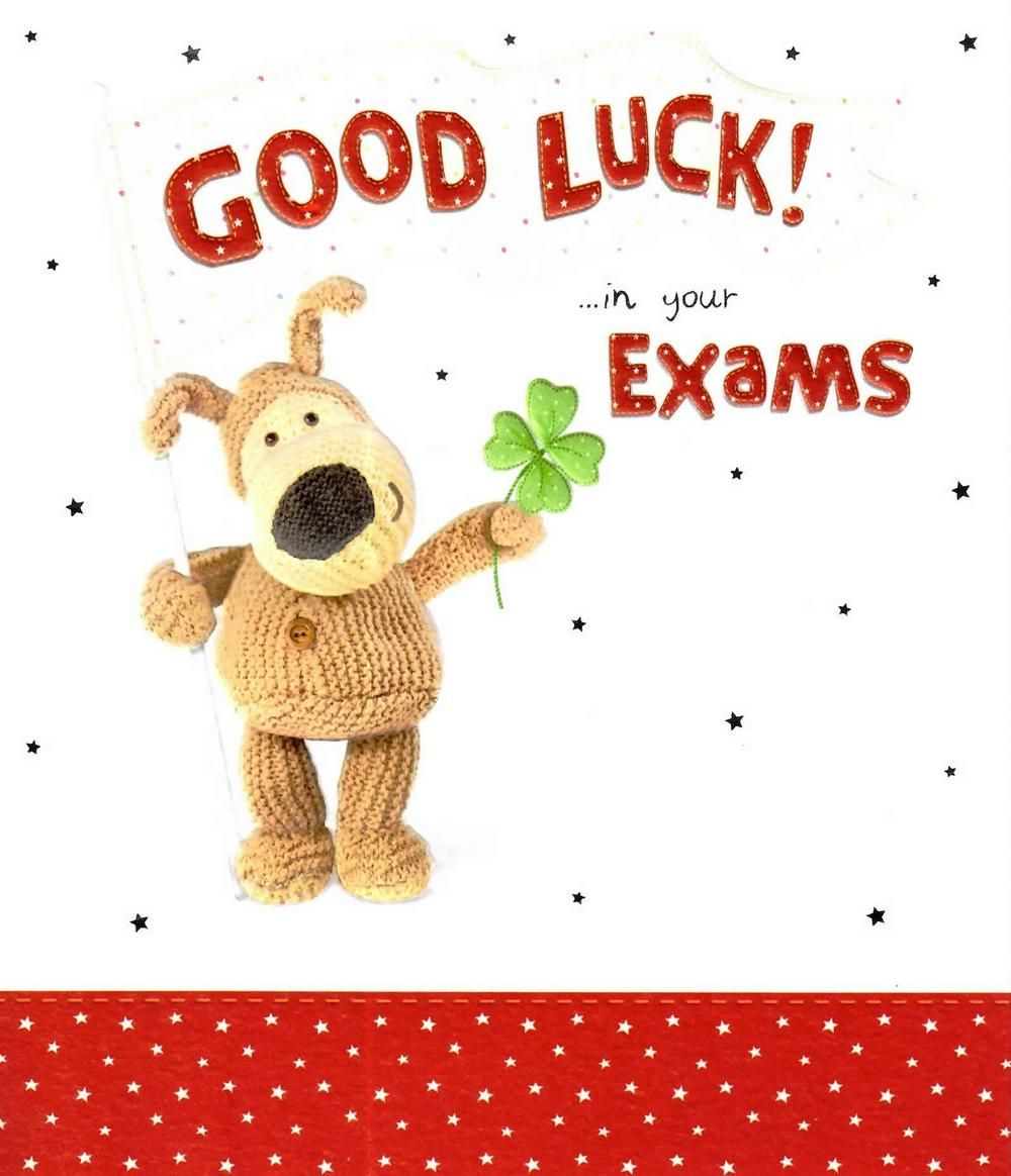 Boofle Good Luck In Your Exams Greeting Card  Exam Best Wishes Cards