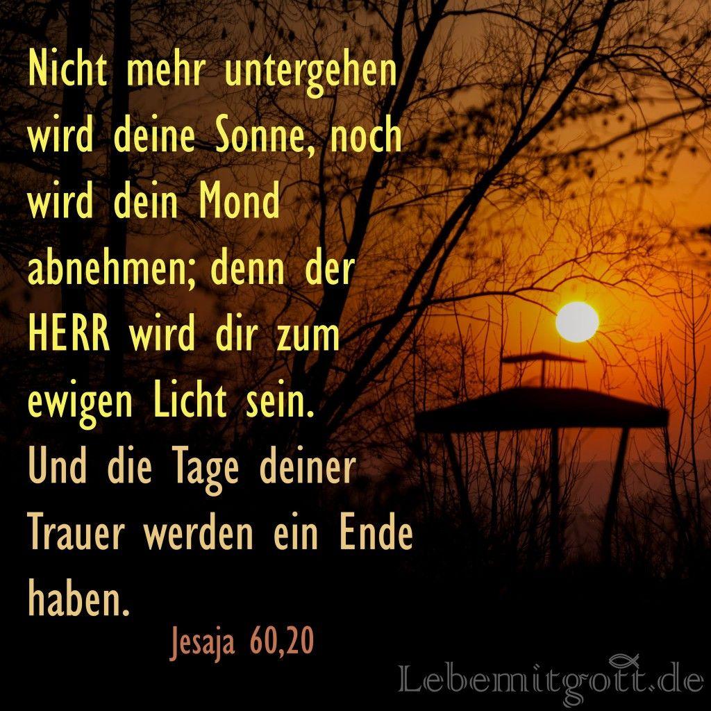 Image Result For Zitate Bibel Herz