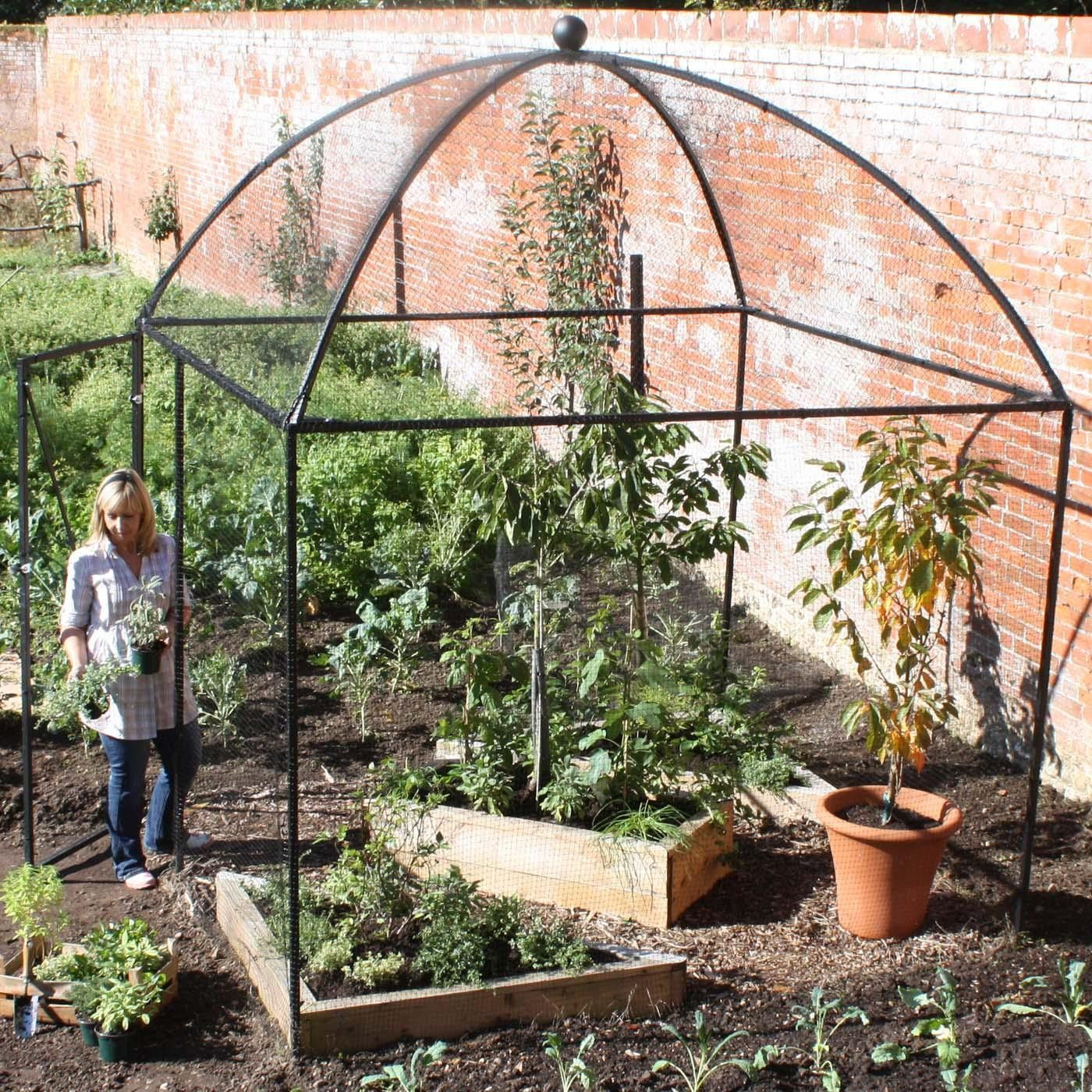 Dome Roof Heavy Duty Steel Decorative Fruit Cage | Steel, Gardens ...