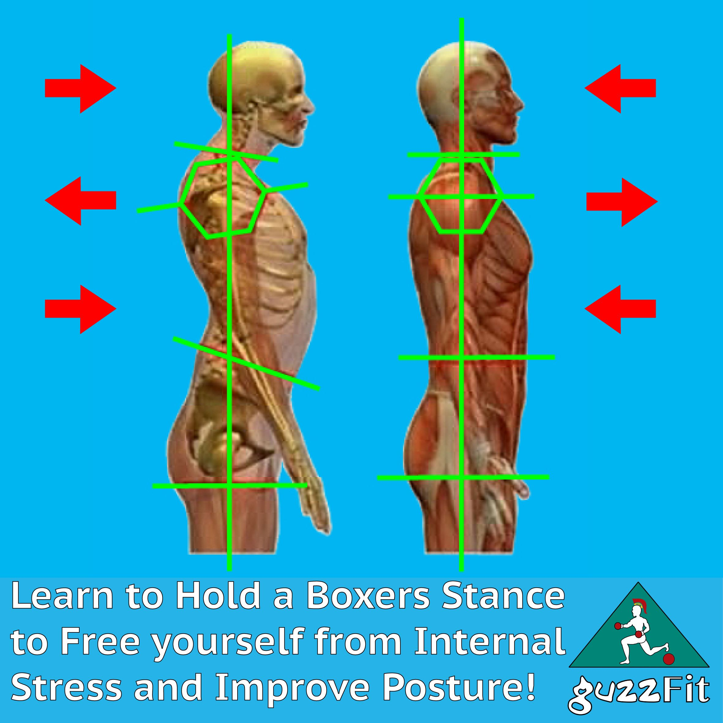 Learn To Hold A Boxers Stance To Free Yourself From Internal Stress And Improve Posture A Free Trial Pt Workout Results Personal Trainers Fitness Training