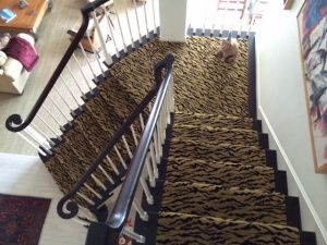 Animal Print Carpet Installed For A Client In Ornage County Ca Our Showroom Offers Wide Variety Of Stair Runners And Area Rugs