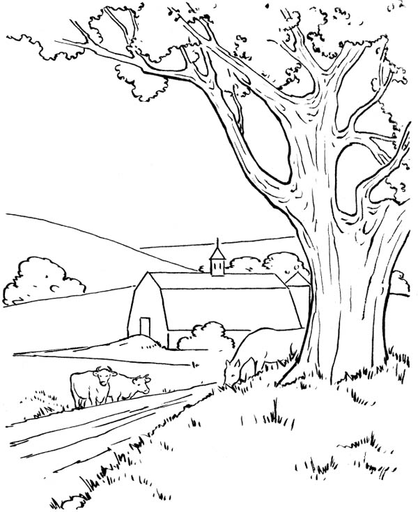 Farm At The Village Coloring Page Coloring Sky Coloring Pages Nature Farm Coloring Pages Coloring Pages
