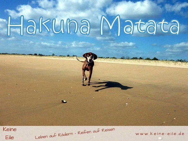 Hakuna Matata!