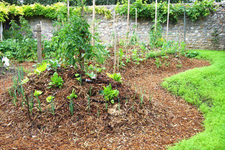 Cr er une butte permanente au potager potager for Creer une butte permaculture