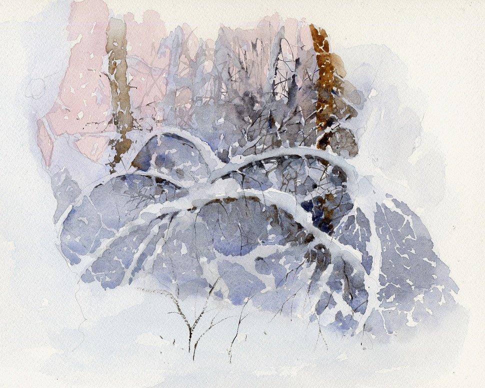 снежный хаос вперемежку с ветками и стволами деревьев ...