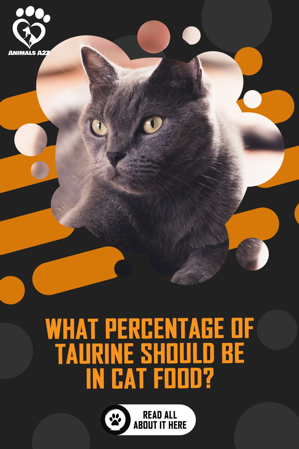 What Percentage Of Taurine Should Be In Cat Food Detailed Answer In 2020 Cat Food Cats Pregnant Cat