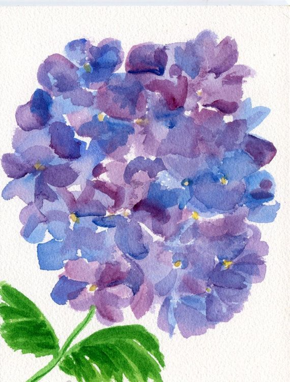 Purple And Blue Hydrangeas Watercolor Painting By Sharonfosterart 22 00