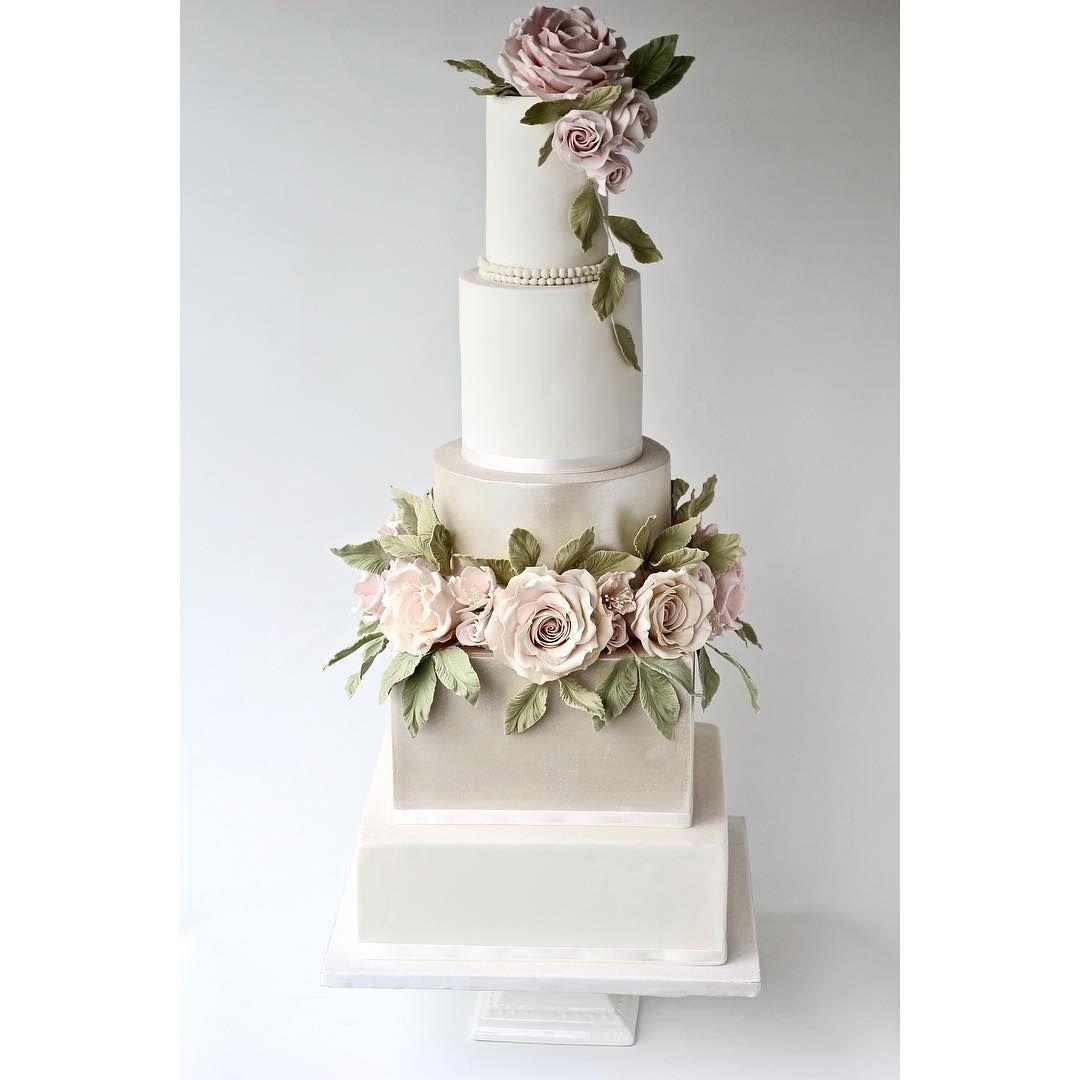likes comments sophiaus cake boutique
