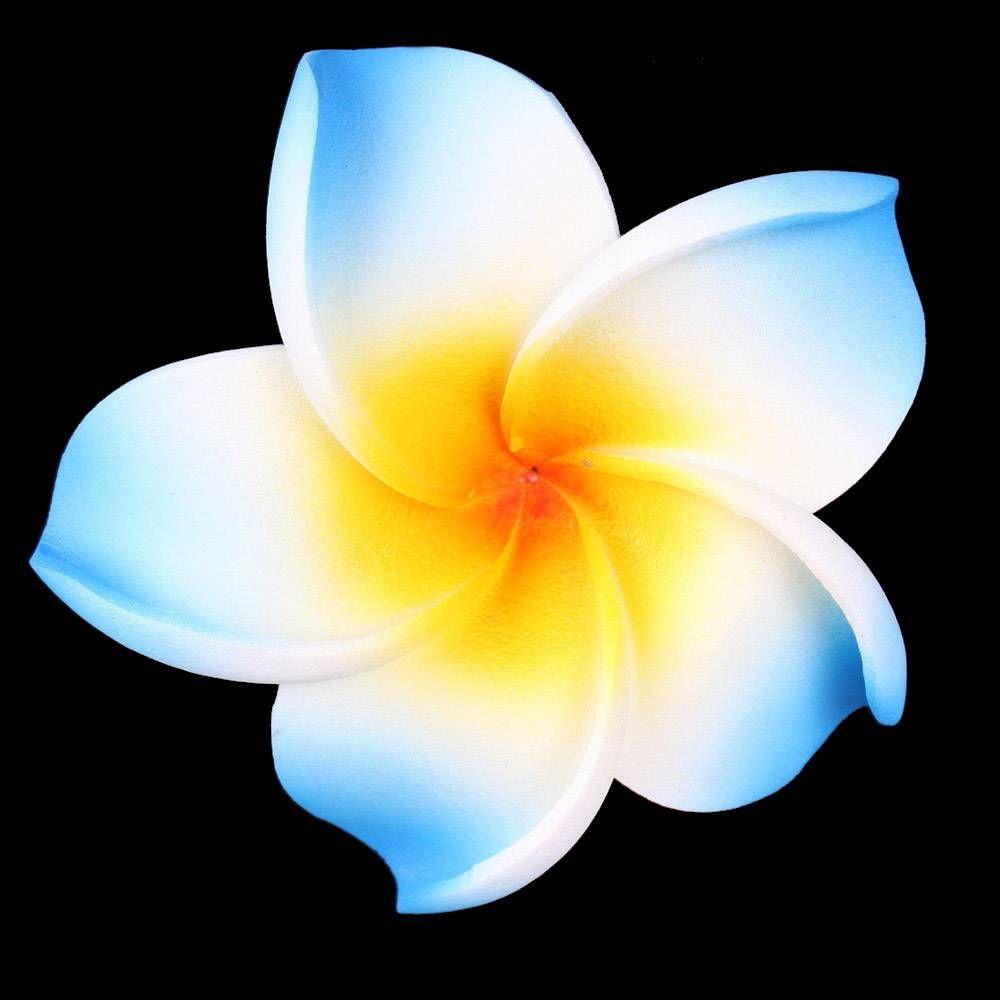 Blue Hawaii Flower 13