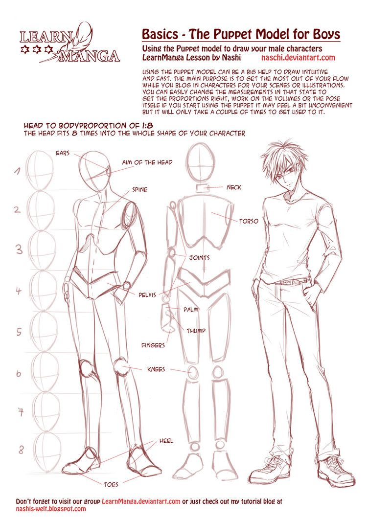 Learn Manga Basics: The Male Puppet by Naschi on deviantART | HOW TO ...