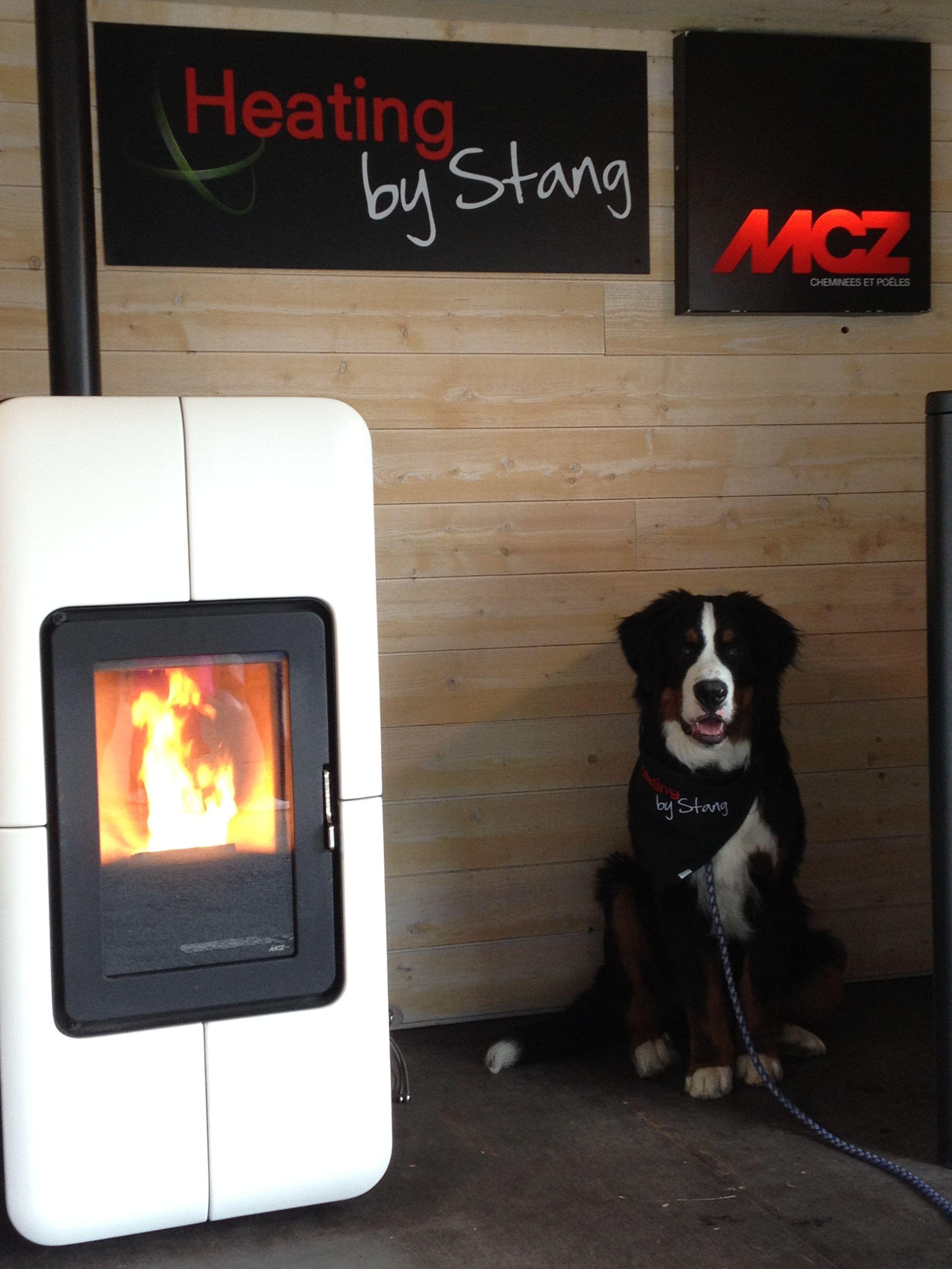 Poªle  granulés MCZ Toba Heating by Stang La Rochelle 17